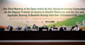 Plenária do ICNP 3
