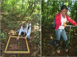 Amostragem de solo pela equipe do projeto. (c) Regina Márcia Longo.