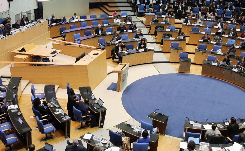 IPBES Plenary