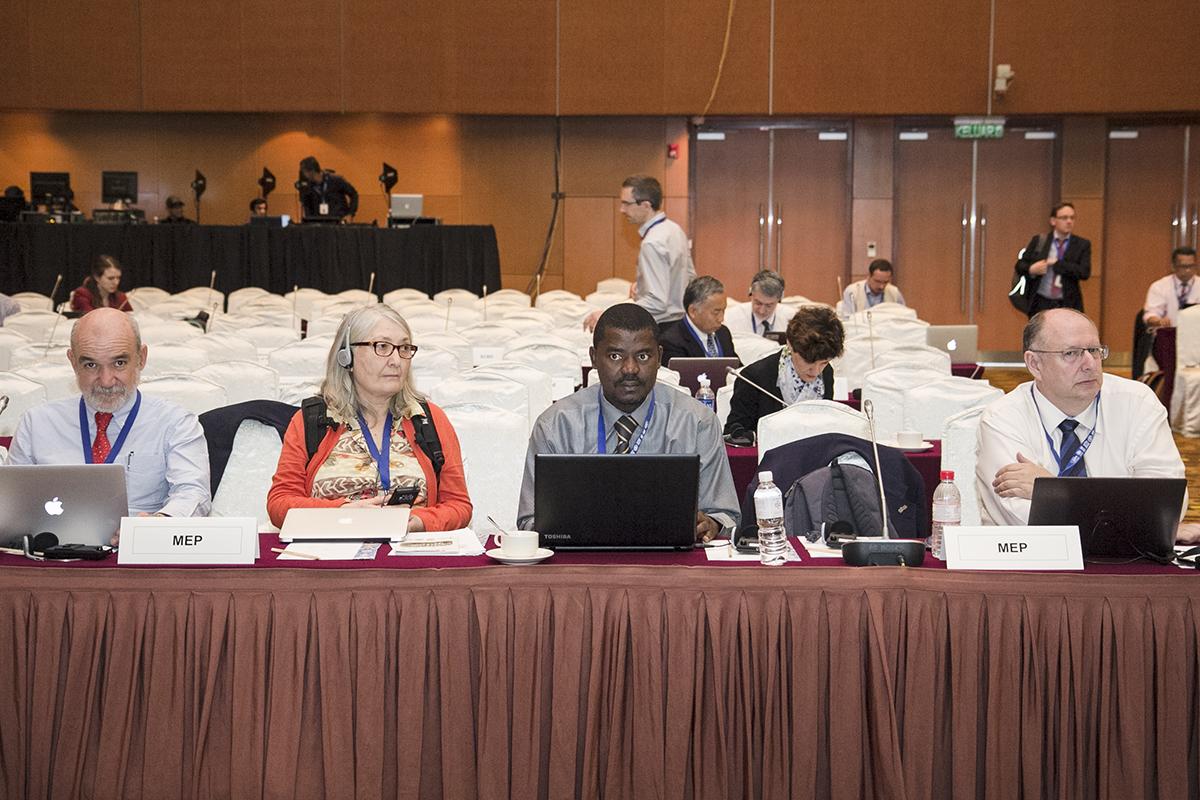 Multidisciplinary Expert Panel (MEP) durante a IV Plenária da Plataforma Intergovernamental sobre Biodiversidade e Serviços dos Ecossistemas (IPBES), realizada em Kuala Lumpur, Malásia, no fim de fevereiro. (C) IISD-RS